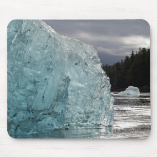 USA, Alaska, Tongass National Forest, Tracy 2 Mouse Pad