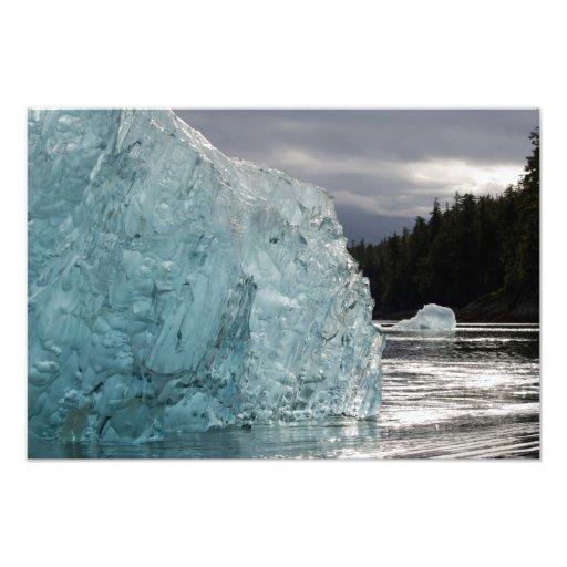 USA, Alaska, Tongass National Forest, Tracy 2 Art Photo