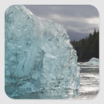 USA, Alaska, Tongass National Forest, Tracy 2 Square Sticker