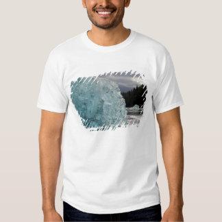 USA, Alaska, Tongass National Forest, Tracy 2 Tee Shirt