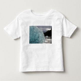 USA, Alaska, Tongass National Forest, Tracy 2 Toddler T-shirt
