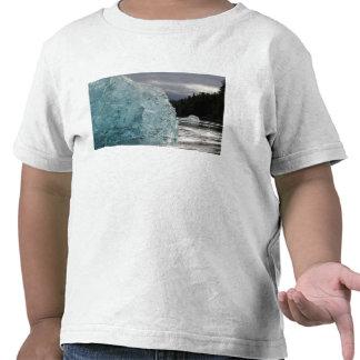 USA, Alaska, Tongass National Forest, Tracy 2 T Shirts