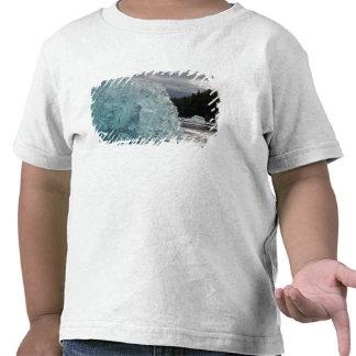 USA, Alaska, Tongass National Forest, Tracy 2 Tshirt