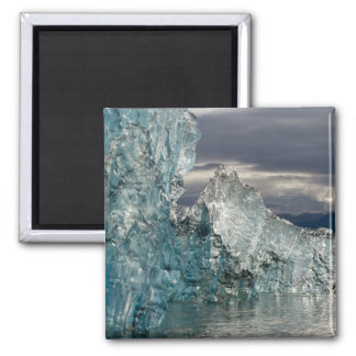 USA, Alaska, Tongass National Forest, Tracy 3 Magnet