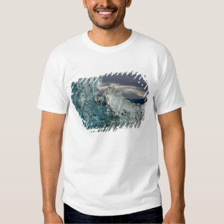 USA, Alaska, Tongass National Forest, Tracy 3 T Shirt