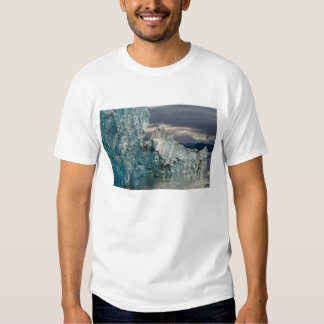 USA, Alaska, Tongass National Forest, Tracy 3 Tee Shirt