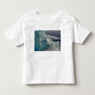 USA, Alaska, Tongass National Forest, Tracy 3 Toddler T-shirt