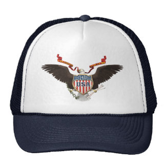 USA American Eagle Patriot Blue Hat