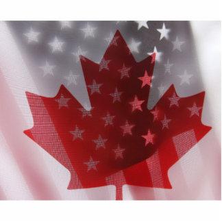 USA and Canada flags photo sculpture medium