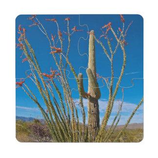 USA, Arizona. Cactus In Saguaro National Park Puzzle Coaster