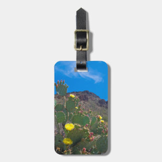 USA, Arizona. Cactus In The Hills Bag Tag