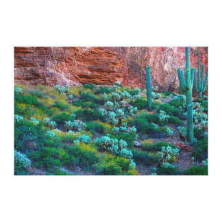 USA, Arizona. Desert Flora Canvas Print
