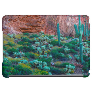 USA, Arizona. Desert Flora Case For iPad Air