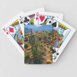 USA, Arizona. Desert View Bicycle Playing Cards