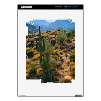 USA, Arizona. Desert View Decals For iPad 3