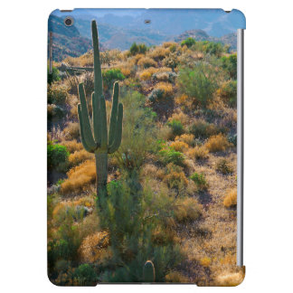 USA, Arizona. Desert View iPad Air Covers