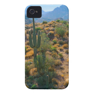 USA, Arizona. Desert View iPhone 4 Case