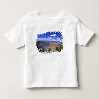 USA, Arizona, Grand Canyon National Park, South Tee Shirt