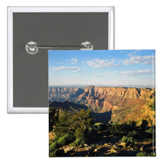USA, Arizona, Grand Canyon National Park, View Button