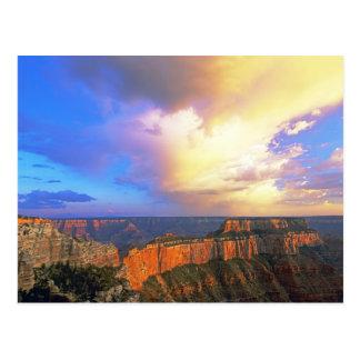 USA, Arizona, Grand Canyon National Park. View Postcard