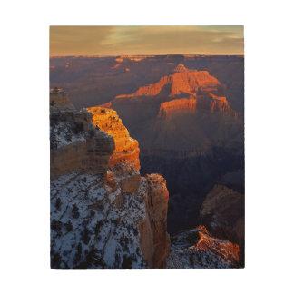 USA, Arizona, Grand Canyon National Park, Winter Wood Wall Decor