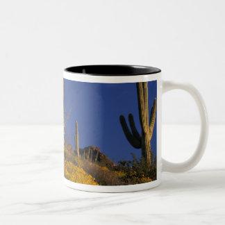 USA, Arizona, Organ Pipe Cactus National 2 Two-Tone Coffee Mug