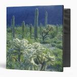 USA, Arizona, Organ Pipe Cactus National Binder