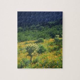USA, Arizona, Organ Pipe Cactus National Jigsaw Puzzle