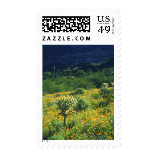 USA, Arizona, Organ Pipe Cactus National Stamp