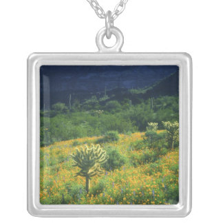 USA, Arizona, Organ Pipe Cactus National Silver Plated Necklace