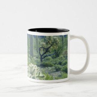 USA, Arizona, Organ Pipe Cactus National Two-Tone Coffee Mug