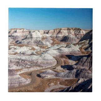 USA, Arizona, Petrified Forest National Park Tile
