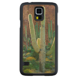 USA, Arizona. Saguaro Cactus Field By A Cliff Carved® Maple Galaxy S5 Case