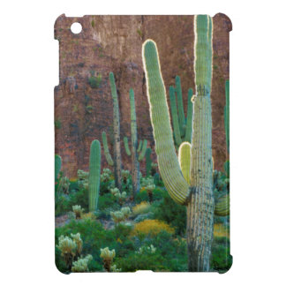 USA, Arizona. Saguaro Cactus Field By A Cliff iPad Mini Covers
