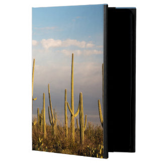 USA, Arizona, Saguaro National Park, Saguaro iPad Air Case
