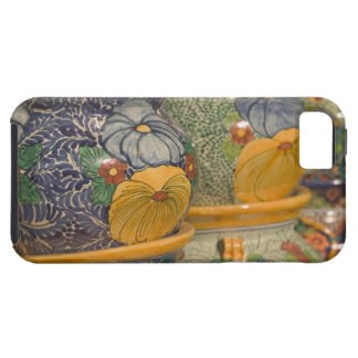 USA, Arizona, Tubac: South Arizona's Premier 2 iPhone SE/5/5s Case
