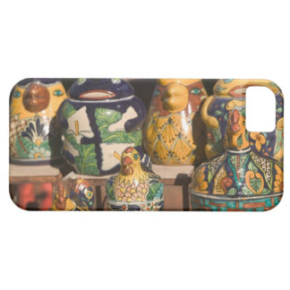 USA, Arizona, Tubac: South Arizona's Premier iPhone SE/5/5s Case