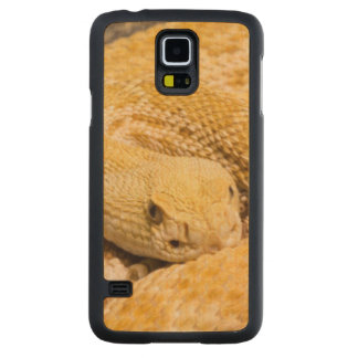 USA, Arizona, Tucson, Arizona-Sonora Desert 2 Carved Maple Galaxy S5 Slim Case
