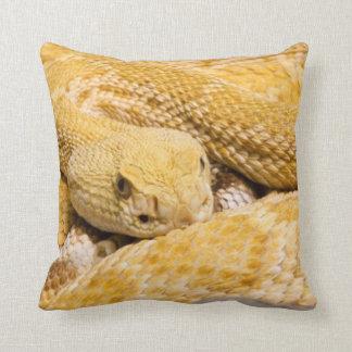 USA, Arizona, Tucson, Arizona-Sonora Desert 2 Throw Pillow