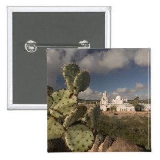 USA, Arizona, Tucson: Mission San Xavier del Bac 2 Pinback Button