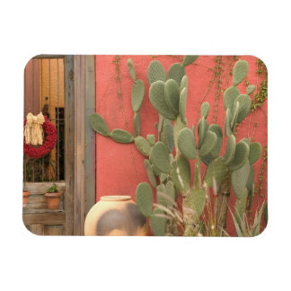 USA, Arizona, Tucson: Presidio Historic District 2 Magnet