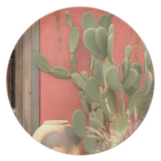 USA, Arizona, Tucson: Presidio Historic District 2 Plate
