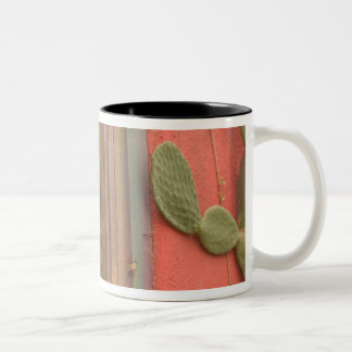 USA, Arizona, Tucson: Presidio Historic District Two-Tone Coffee Mug