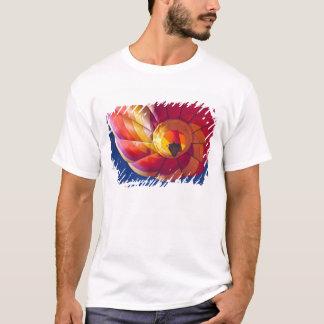 USA, Arizona, Val Vista. A colorful hot-air T-Shirt