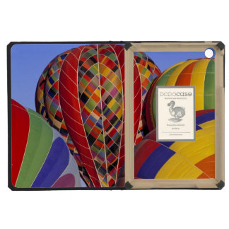 USA, Arizona, Val Vista. Colorful hot-air iPad Mini Covers