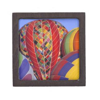 USA, Arizona, Val Vista. Colorful hot-air Jewelry Box