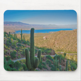 USA, Arizona. View From The Entrance To Tonto Mouse Pad