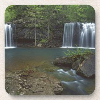 USA, Arkansas, Ozark- St Francis National Coaster