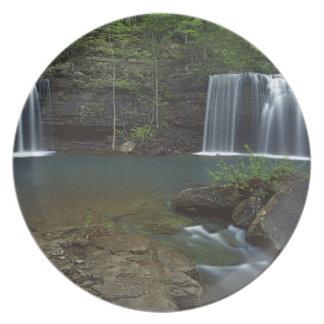 USA, Arkansas, Ozark- St Francis National Plate