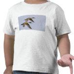 USA, Blaine, Washington. Male and female Tee Shirts